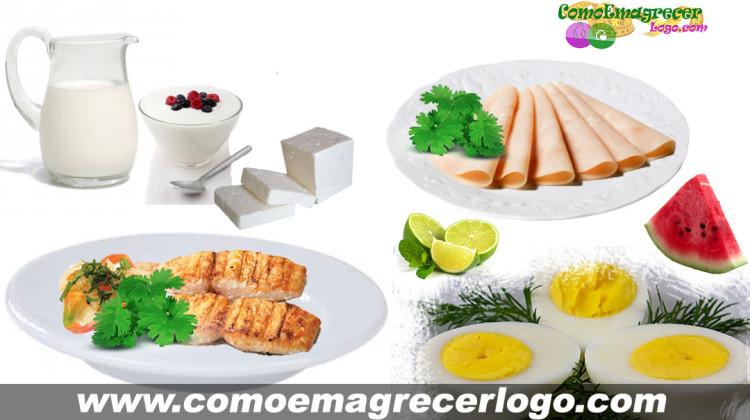 Dieta da Proteína como funciona; cardápio e dicas